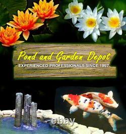 Custom Pro Floating Pond Fountain & Aerator Avec Buse Multi-niveaux Rwb Led 3000
